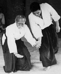 aikido1 (Mobile)
