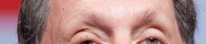 Larry_Ellison_eyebrows picture